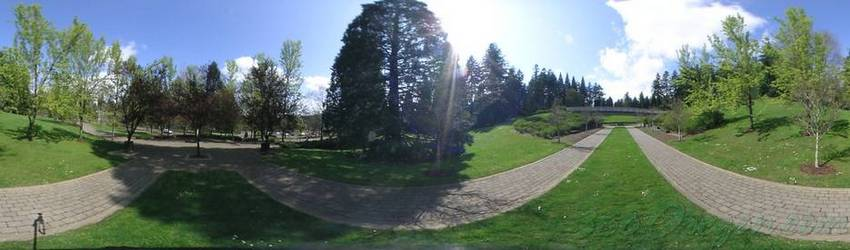 Click to view image in panoramic viewer